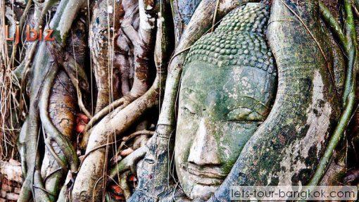 Ayutthaya wat mahathat buddha head