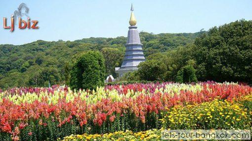 Chiang Mai Doi Inthanon Twin Pagodas