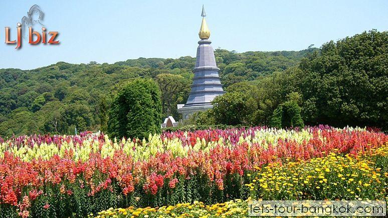 CNX_Doi_ Inthanon_Twin Pagodas_ (2)