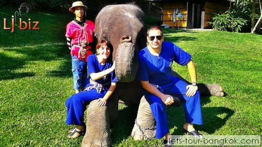 Mea Sa Elephant camp Chiang Mai