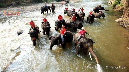 maetaman elephant ride