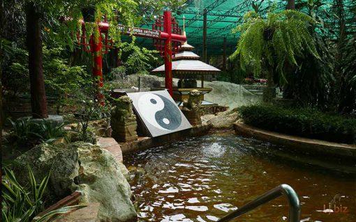 fish spa kanchanaburi