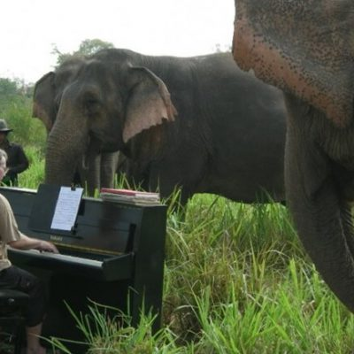 Elephant world Kanchanaburi