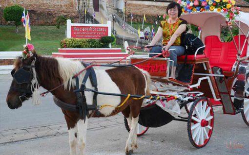 horse riding in front of wat phatat Lampang Luang