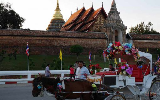 horse riding in front of wat phatat Lampang Luang