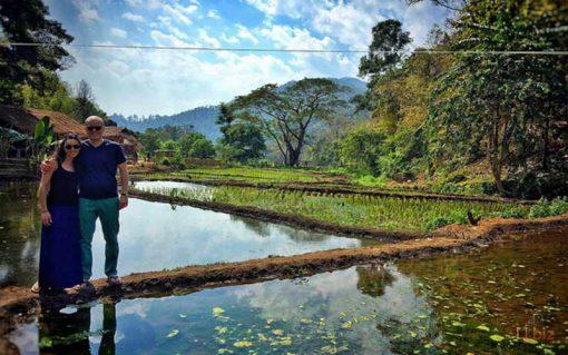 baan tong luang, Chiang mai