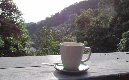 Mae Kampong village coffee view