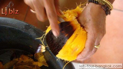 HuaHin Toddy Palm