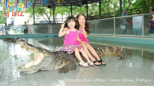 Pattaya million year park