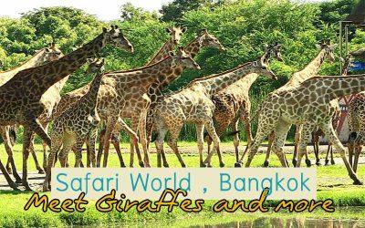 Safari World Bangkok – Animal Tourist Attractions !!