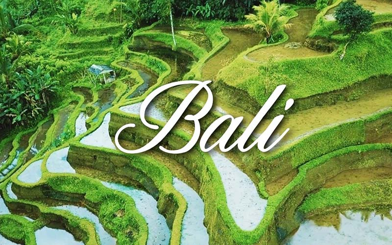 Bali Travel Guide and City Orientation