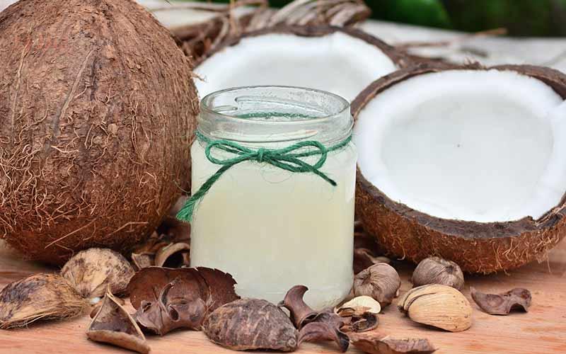 coconut jouice