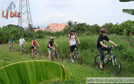 biking in farm Chaing mai