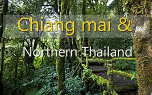 Chiang mai doi intranon