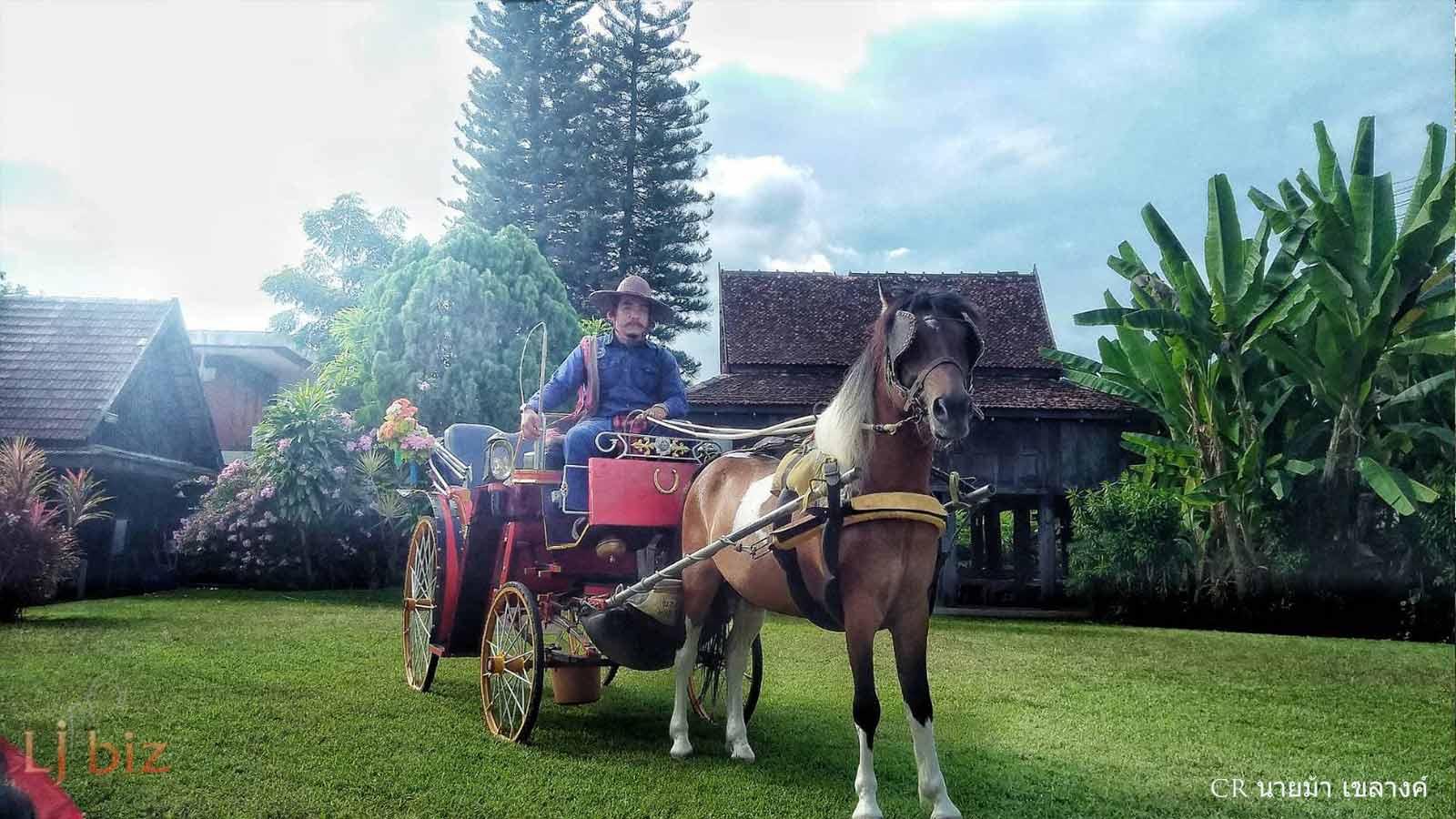 Lampang horse carriage