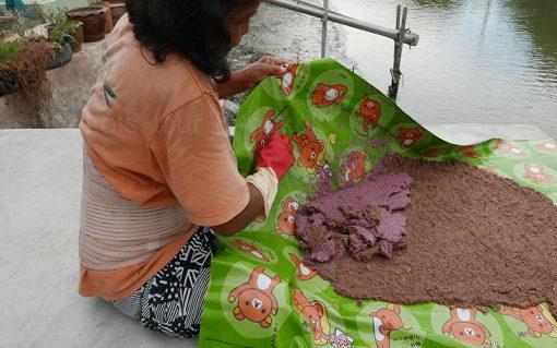Krabi make from krill