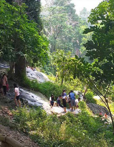 cnx-Bua-tong-waterfall-06